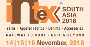 intex south logo