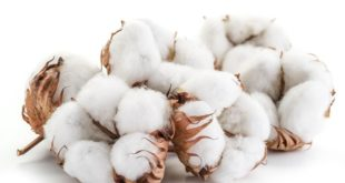 ITMF International Committee on Cotton Testing Methods (ICCTM)