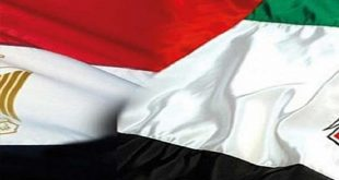 UAE ENVOY: EGYPT ENJOYS GOOD INVESTMENT OPPORTUNITIES