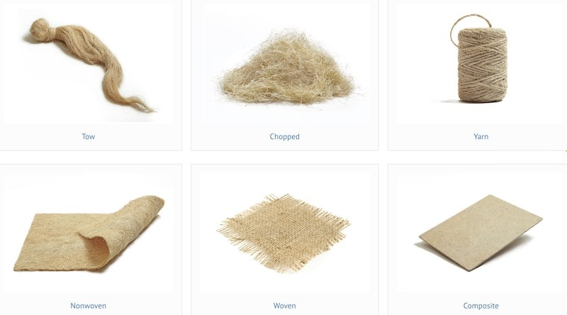 First textile palm fibers and reinforcements