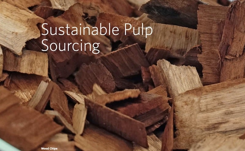 Asia-Pacific-Rayon-inaugural-sustainability-progress-report-wood-chips
