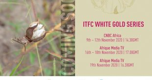 FR_ITFC-White-Gold-Series-Press-Release-Visual