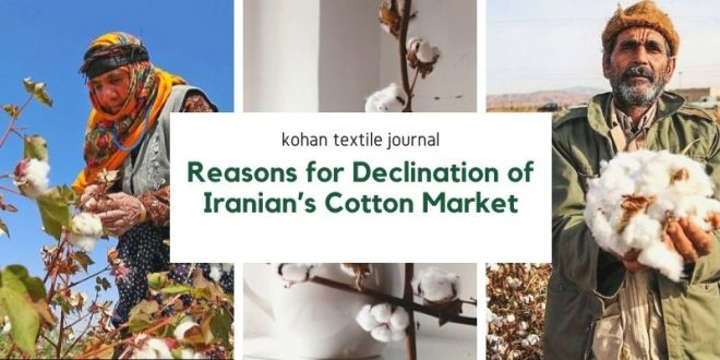 Reason for Declination of Iranian's Cotton Market